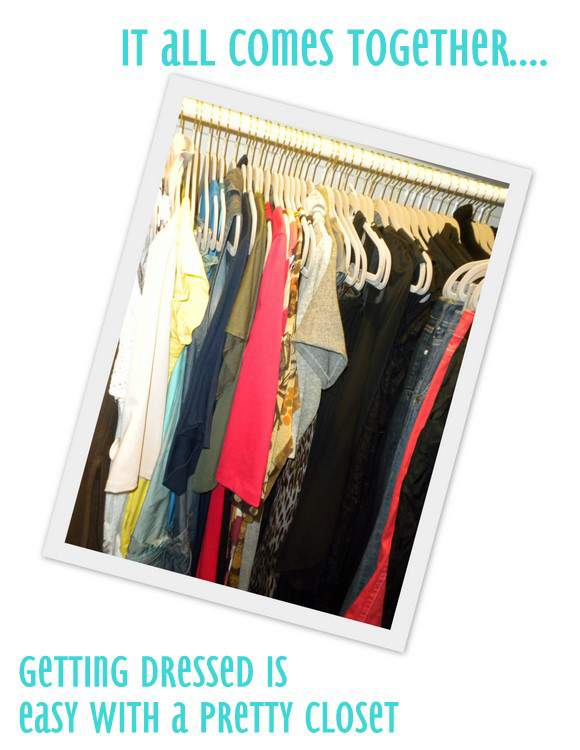 The Curvy Fashionista's Closet