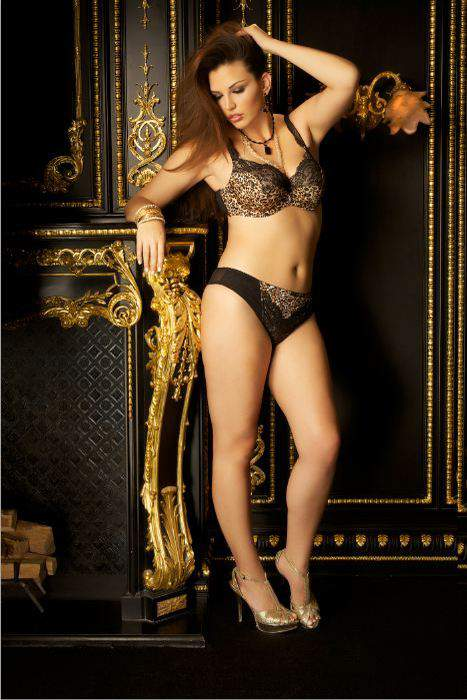 New Plus Size Bra Designer Curvy Couture: Animal