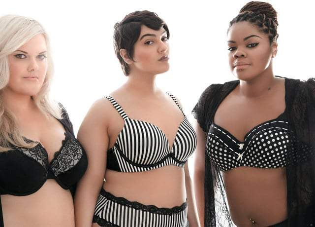 Addition Elle Be a Showstopper Campaign w/ Ashley Graham and Plus Size Bloggers