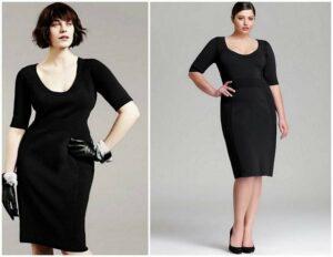 Plus Size Fashion Segments and Options