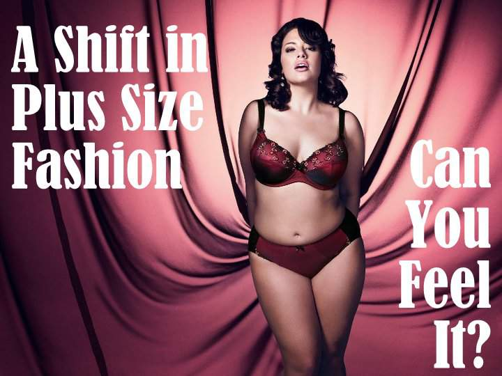 Image result for plus size fashion industry