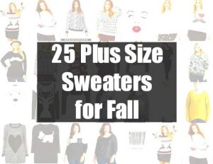 25 plus size sweaters for fall