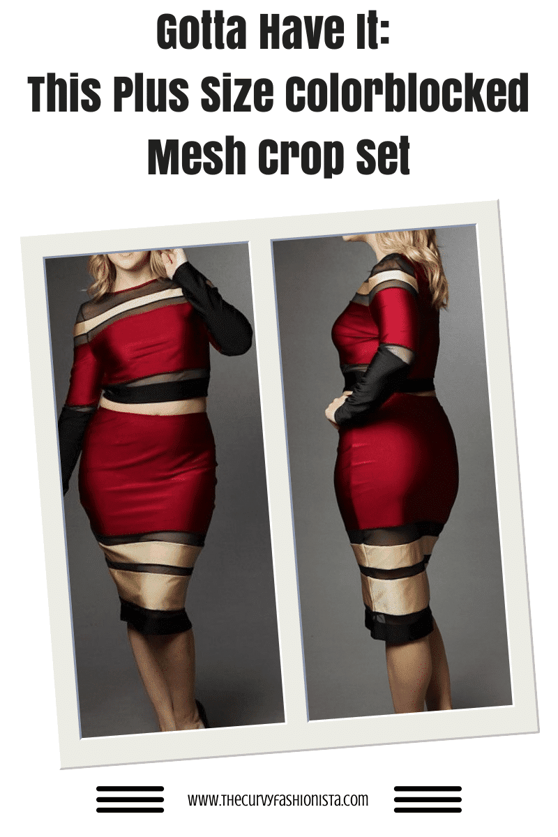 Plus Size Colorblocked Mesh Crop on The Curvy Fashionista