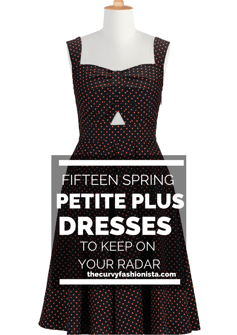 petite plus dresses on The Curvy Fashionista