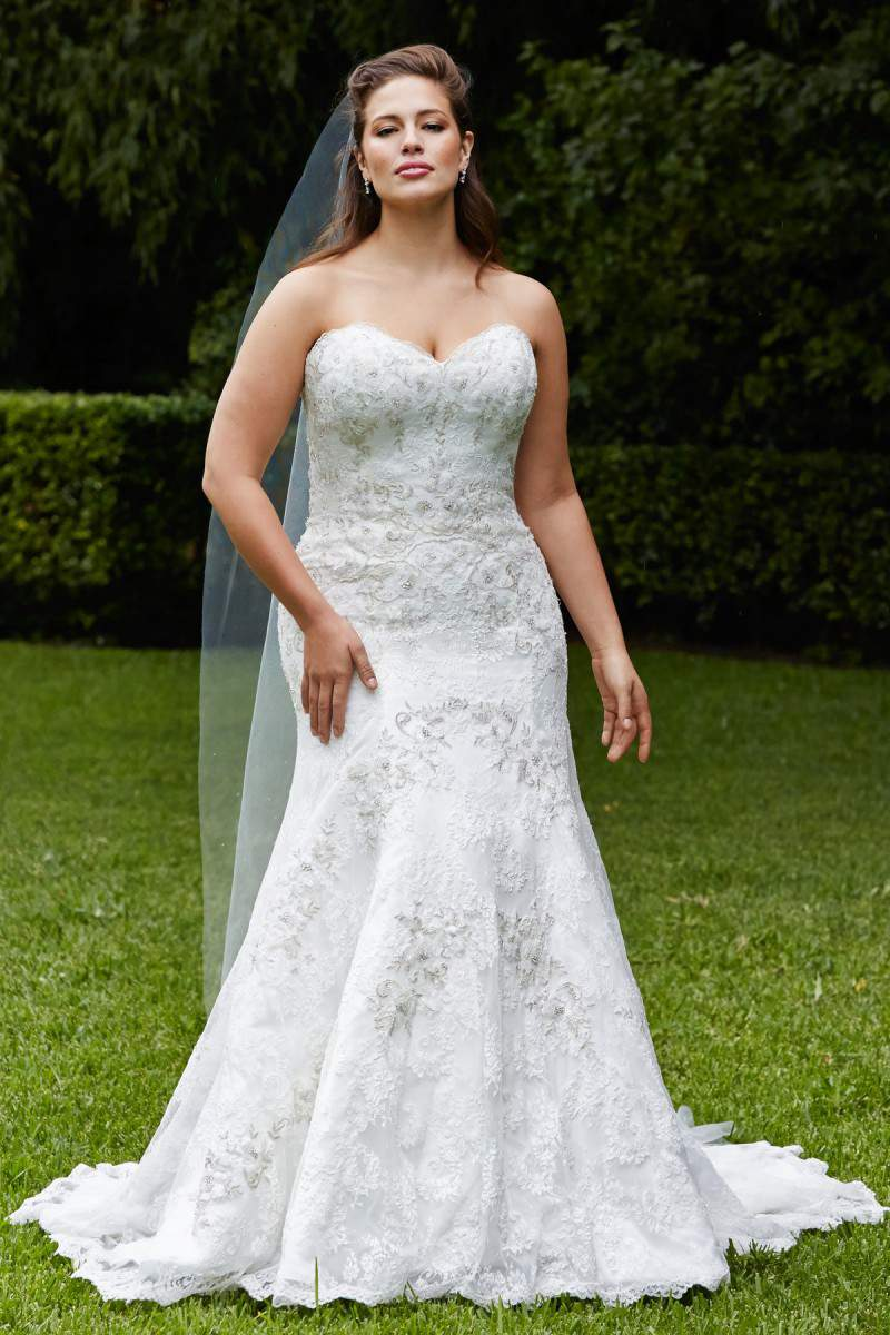 For the Plus Size Bride: Wtoo Curve Plus Bridal Brides by Watters