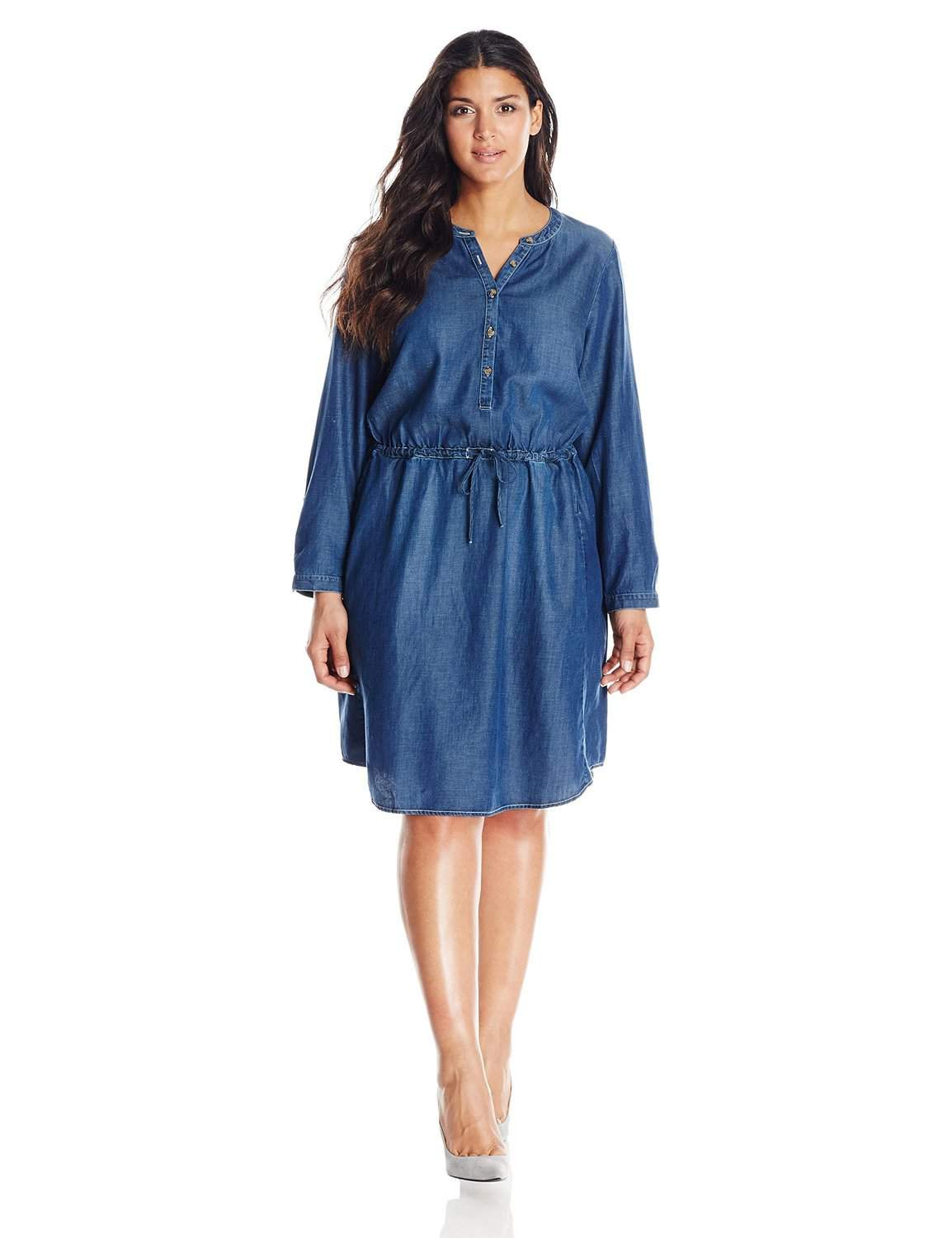 The Plus Size Denim Dress and 10 Picks for You
