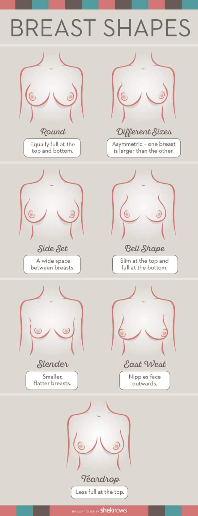 What is your breast shape? Image by SheKnows.com