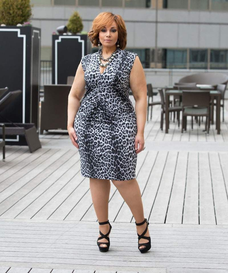 The Plus Size Grey Leopard Joie Dress at Shavonne Dorsey