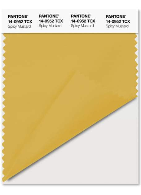 Spicy Mustard Pantone