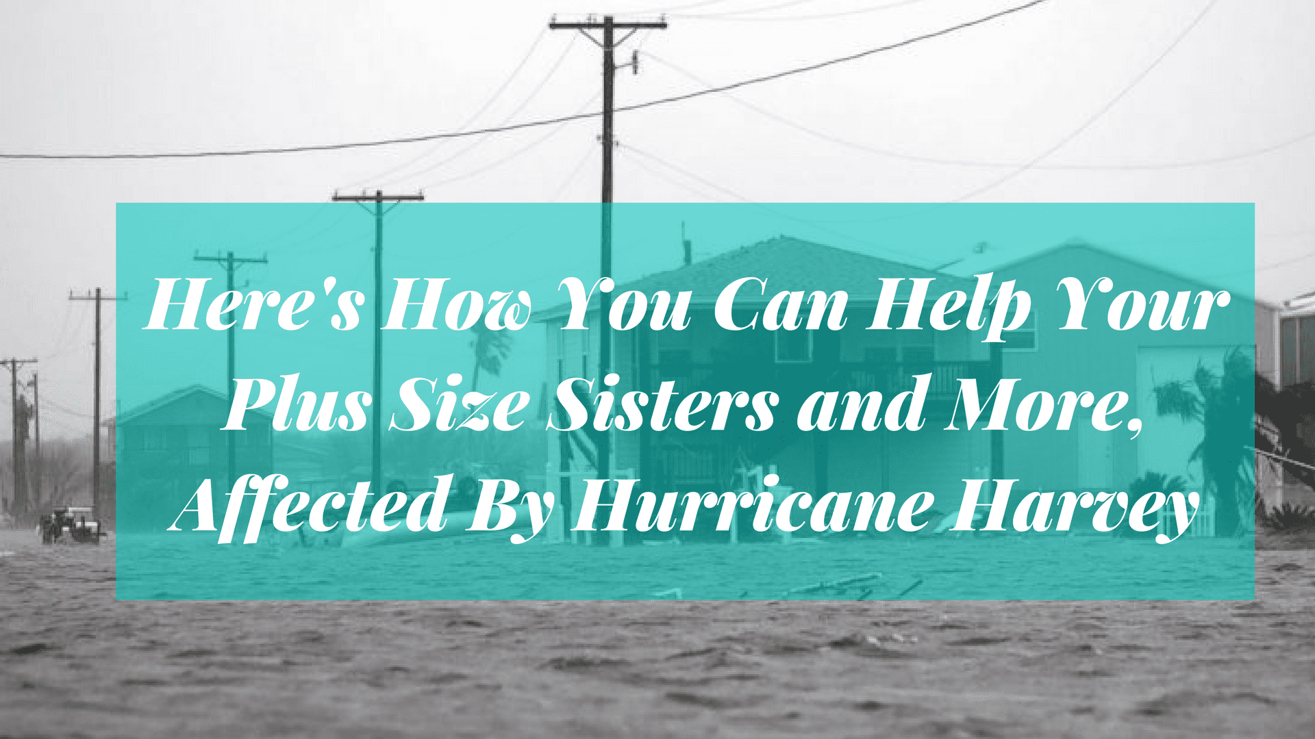 hurricane Harvey, Texas, Houston, help survivors