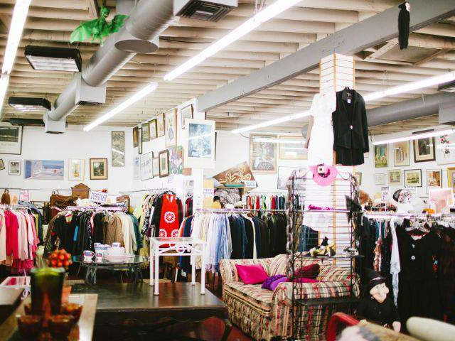 Your Ultimate Plus Size Thrift Store Shopping Guide