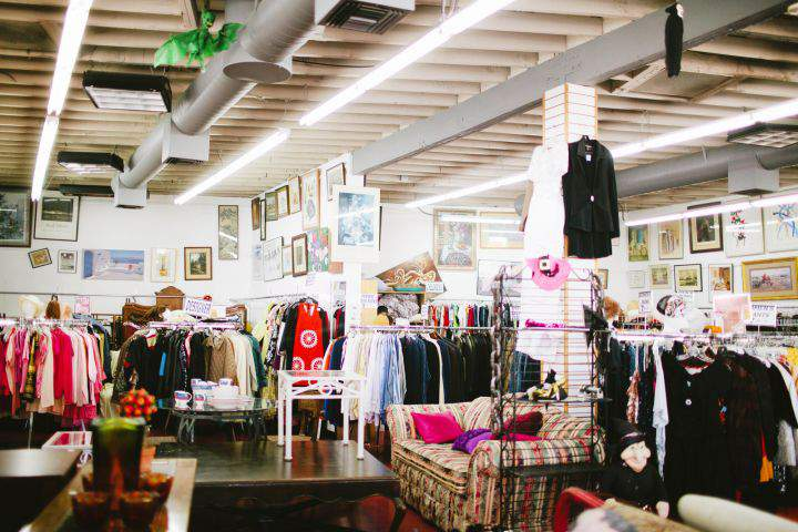 Your Ultimate Guide to Plus Size Thrifting