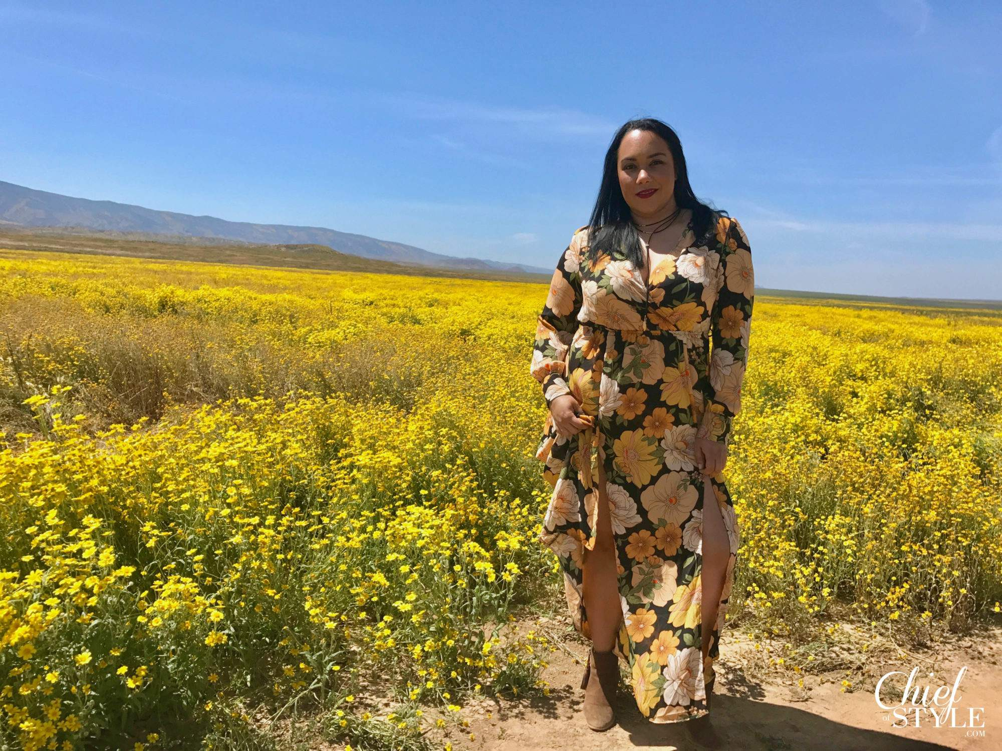 Plus Size Fashion Blogger Spotlight: Amy of The Chief of Style