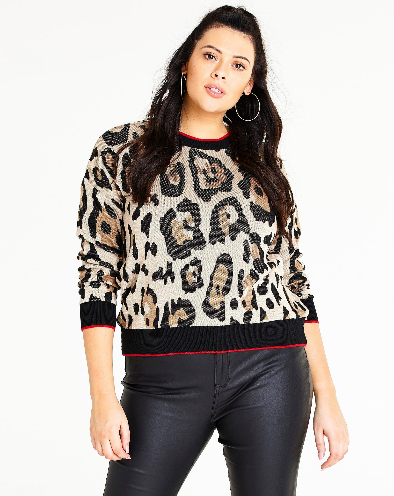 Plus Size Sweaters: Leopard Sweater at SImply be